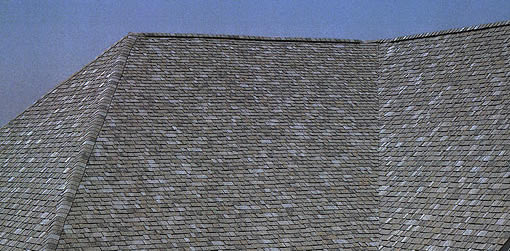 Asphalt roofs are the most common roofing systems in the US.