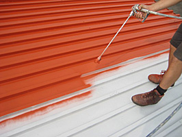 Painting A Metal Roof Roofing Roger